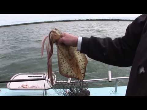 That's Fishing Season 5 Episode 12 'Fishing Tech Special'