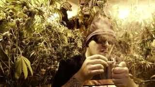 BigFoot Caught on Video in Marijuana Garden