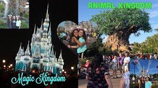 Disney World Vlog! | Magic Kingdom & Animal Kingdom |