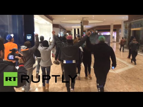 'We are Mike Brown!' Ferguson protesters rally in St. Louis mall