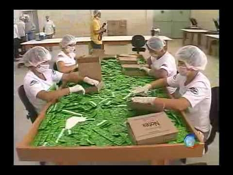 Fabrica de Preservativos