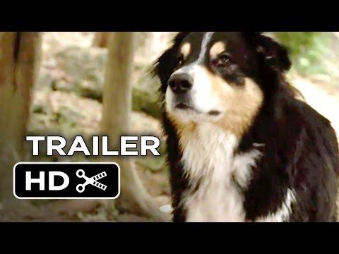 Watch Bark Ranger (2015) Online Free Putlocker