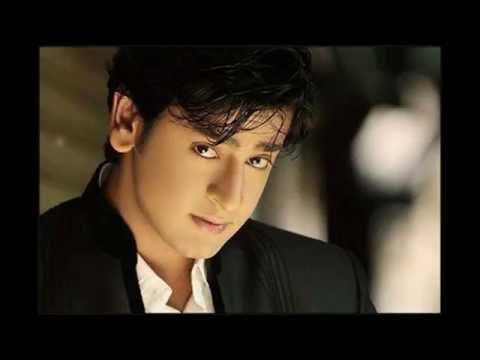 Shashank Vyas Pemeran MLA Dr Jagdish Bhairon Singh dalam serial Anandhi ANTV