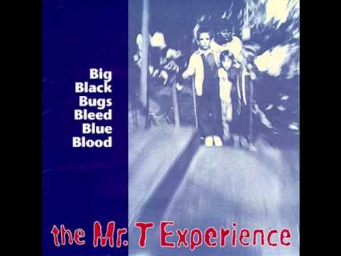 Mr T Experience - The End Of The Ramones
