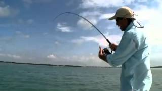 :: Sport Fishing TV :: Bill Boyce Tackles 90lb Tarpon