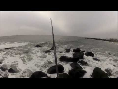 SURF FISHING NEW JERSEY - THE FALL RUN RECAP 2012