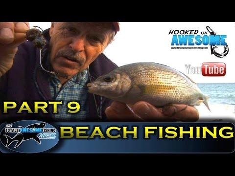 BEACH FISHING TIPS for beginners (Part 9) - TAFishing