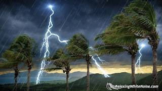 Tropical Storm Thunder and Rain Sounds | 10 Hours White Noise | Helps You Sleep or Study