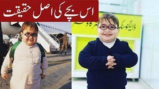 (Pathan Kaa Bachha) Who Is Cute Ahemd Shah | Little Star ahmad shah's biography and interests