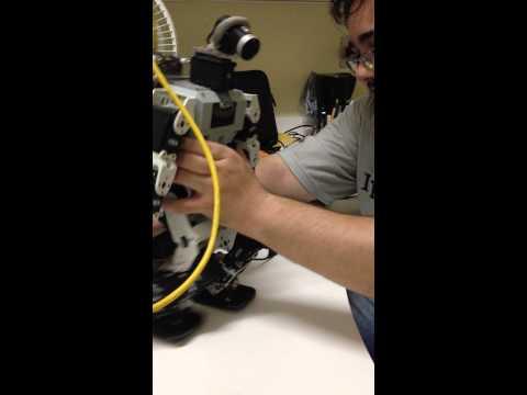 Humanoid robot thesis