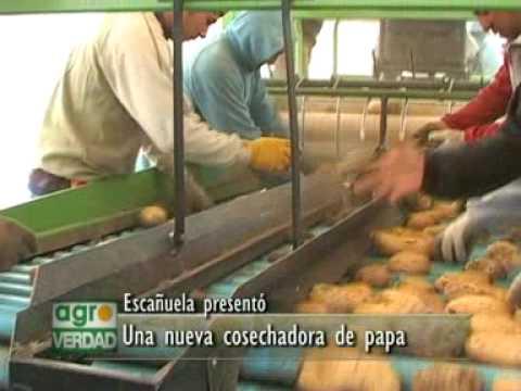 Nueva cosechadora de papas de la fábrica Escañuela.