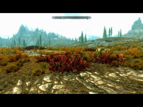 The Elder Scrolls V: Skyrim (PC) Review