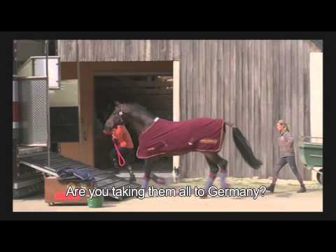 Of Women and Horses / Sport de filles (2012) - Promo reel ENG SUBS