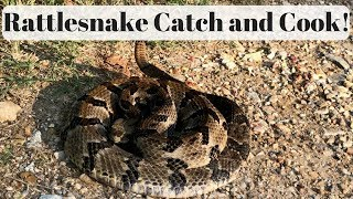 Rattlesnake Catch, Clean, and Cook!