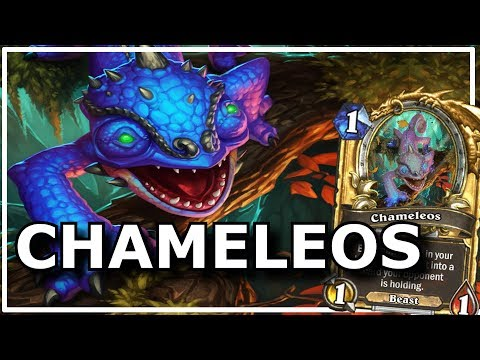 Hearthstone - Best of Chameleos