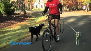 Springer Bike Jogger