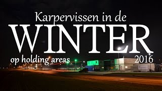 Karpervissen in de winter op holding areas. Winter scenes, Ruben Pels [2016]