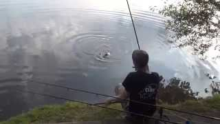 Grain Baits Alberts Lake 2014