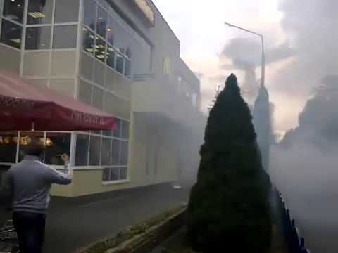 People attacking McDonald's closed in Crimea