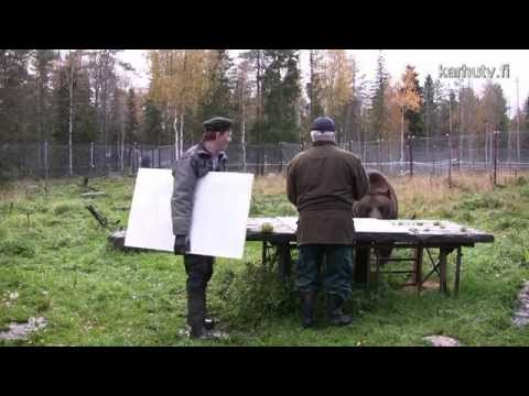 熊が絵を描く!?芸術的な絵を描く熊の映像