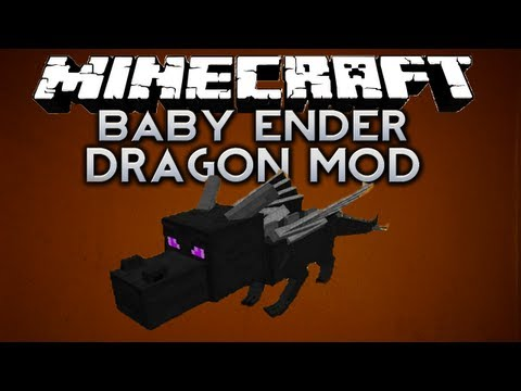 Minecraft: BABY ENDER DRAGON MOD!