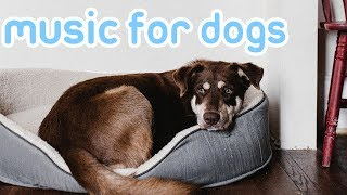 Deep Separation Anxiety Music for Dogs! Calm and Relax Your Dog!  from Relax My Dog - Relaxing Music for Dogs