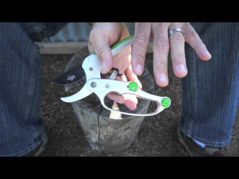 Ratchet pruner review -  from Cates Garden