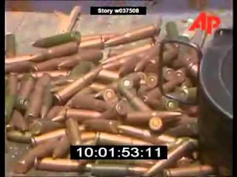 Original Video Of Attack On Golden Temple Amritsar