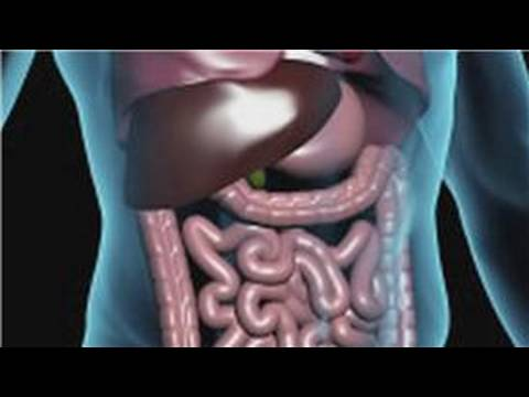 Nutritional Health : How to Clean Your Colon by Fasting