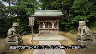 Google Arts & Culture 「Made in Japan:日本の匠」丹後ちりめん(日本語版)