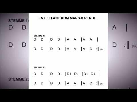 Beginner Strings - open string song (En elefant kom marsjerende)