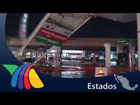 Lluvias derriban árboles y postes en Monterrey | Noticias de Nuevo León