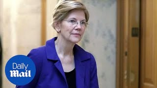 Elizabeth Warren's DNA test shows distant Native American ancestry