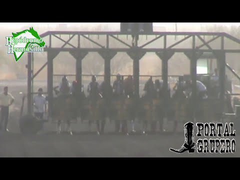 FINAL FUTURITY ABIERTO 2014 HIPODROMO DE HERMOSILLO