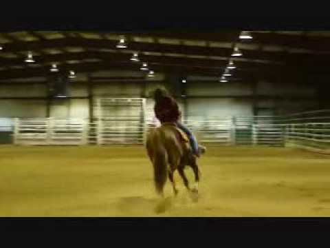 Bridleless Riding Demo