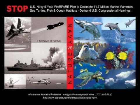 U.S. NAVY'S TWELVE 5-YEAR WARFARE TESTING PROGRAMS Special Report from Rosalind Peterson!