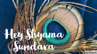 Hey Shyama Sundara | Mesmerising Sathya Sai Baba Song | Aryan Sai