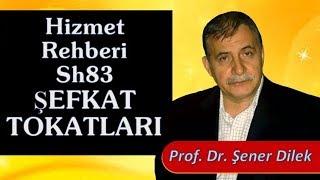 Prof. Dr. Şener Dilek - Hizmet Rehberi - Sh83 - Şefkat Tokatları