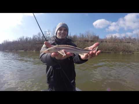 рыбалка на дону весной базы
