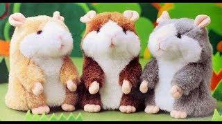 Đồ chơi chuột Hamster nhại tiếng khóc, nói, cười cho bé yêu