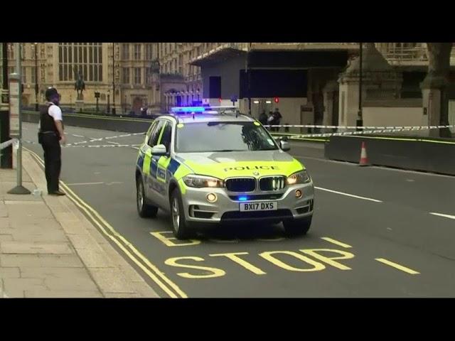 UK Police Arrest Man in Parliament Crash