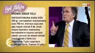 İdrar Yolu Enfeksiyonu İbrahim Saraçoğlu Karnabahar Kürü