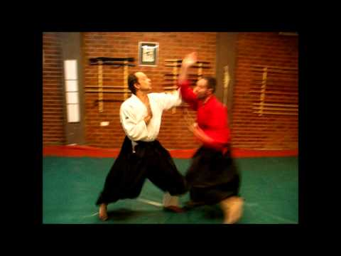 Ogawa Ryu Jujutsu - France and Spain - November Training Image 1