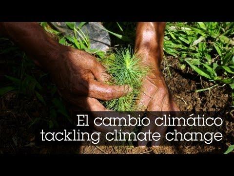 El cambio climático - tackling climate change