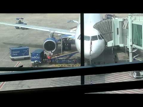 Luggages Unloading from Indigo Airways Boeing 737-800 in Chennai International Airport