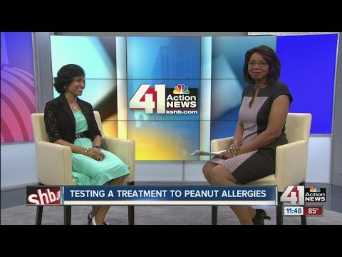 Testing a treatment to peanut allergies