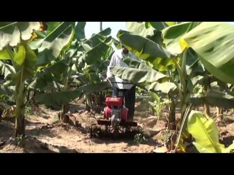 Honda Power Weeder. Tiller. & Brush Cutter Video