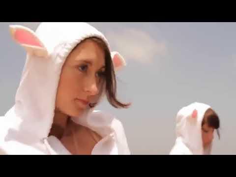 Fumo Hierba - Banda Tatto Falconi - Ttf - Rock Chileno Legalicen La Marihuana video