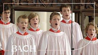 Bach - Opening Chorus Kommt, ihr Töchter from St Matthew Passion BWV 244 | Netherlands Bach Society