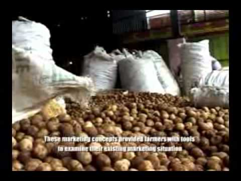 International Potato Center (CIP) Farmer Business School-Indonesia